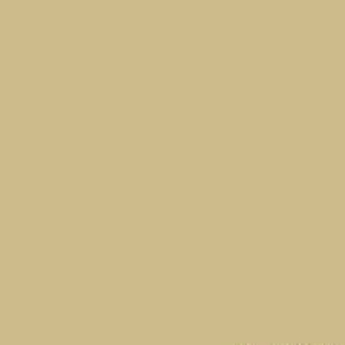 Protecth Oxyplast Ral 1000 Green Beige Polyester 73 Semi